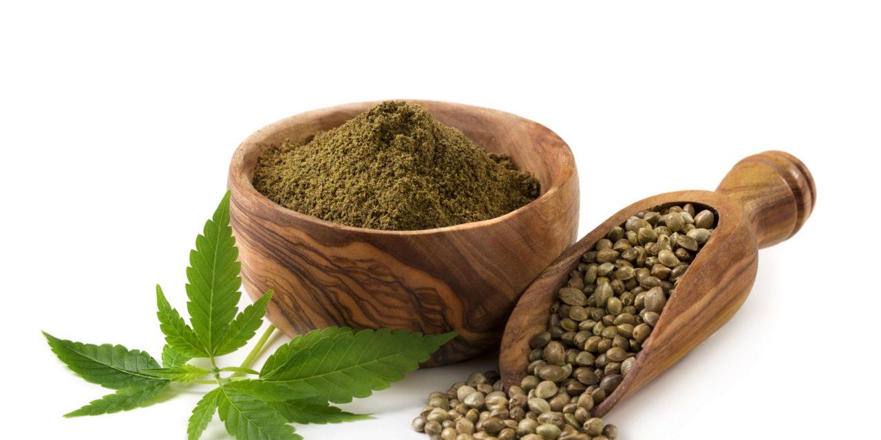 Cannabis-Samen keimen lassen: Grundlagen und Methoden