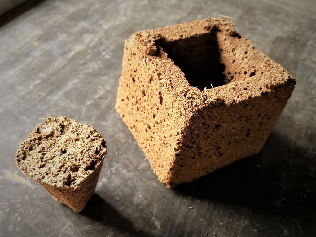 Torfquelltöpf und Torfkeil als Substrat zur Keimung von Hanfsamen