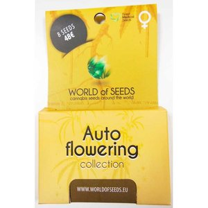 World of Seeds Autoflowering Collection Pack Hanfsamen