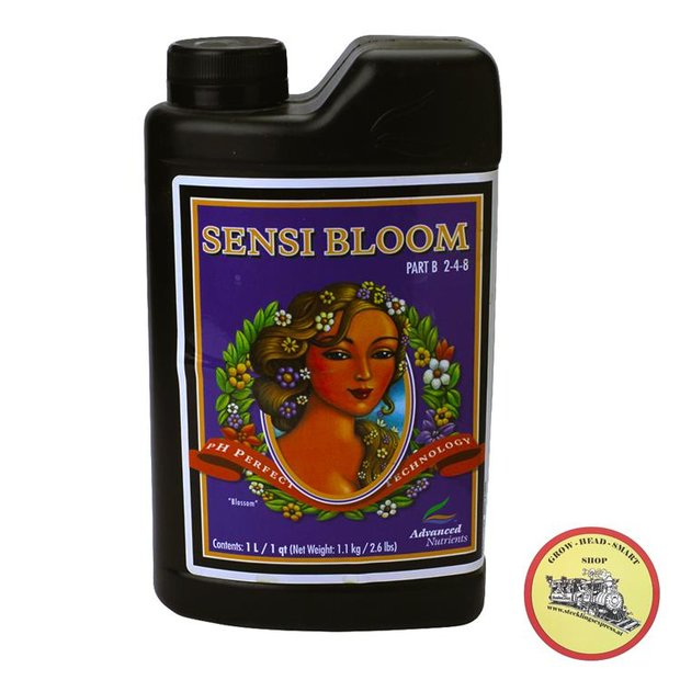 AN Sensi Bloom A&B