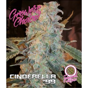 Growers Choice Auto Cinderella 99