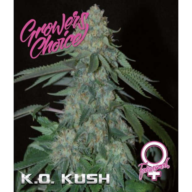 Growers Choice KO Kush